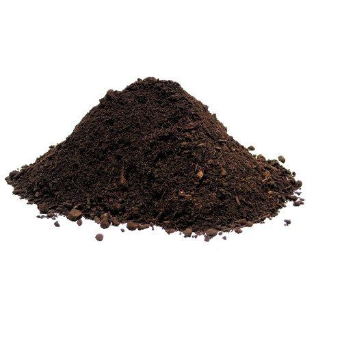 Organic_soil